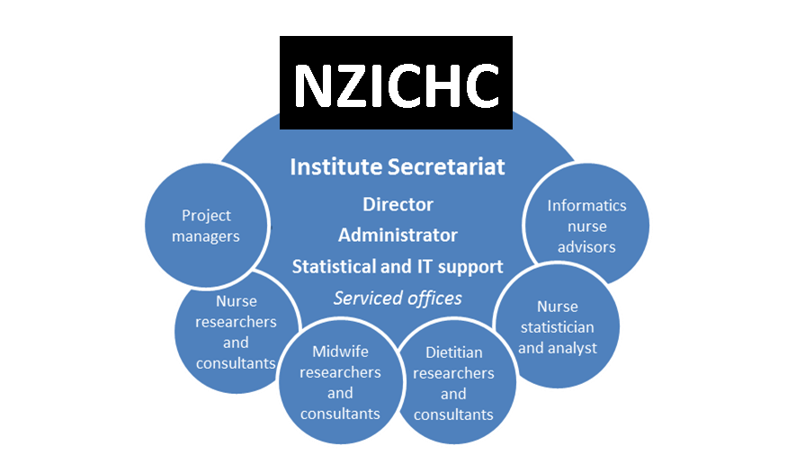 NZICHC Infrastructure diagram 2013